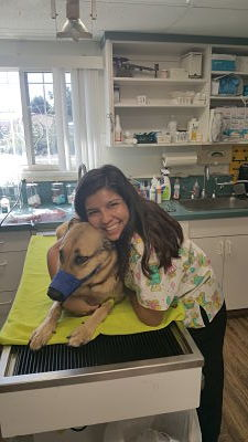Picture of Marisol Martinez, Veterinary Assistant at Imperial Beach Pet Hospital